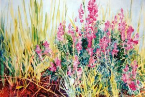 Western Flowers